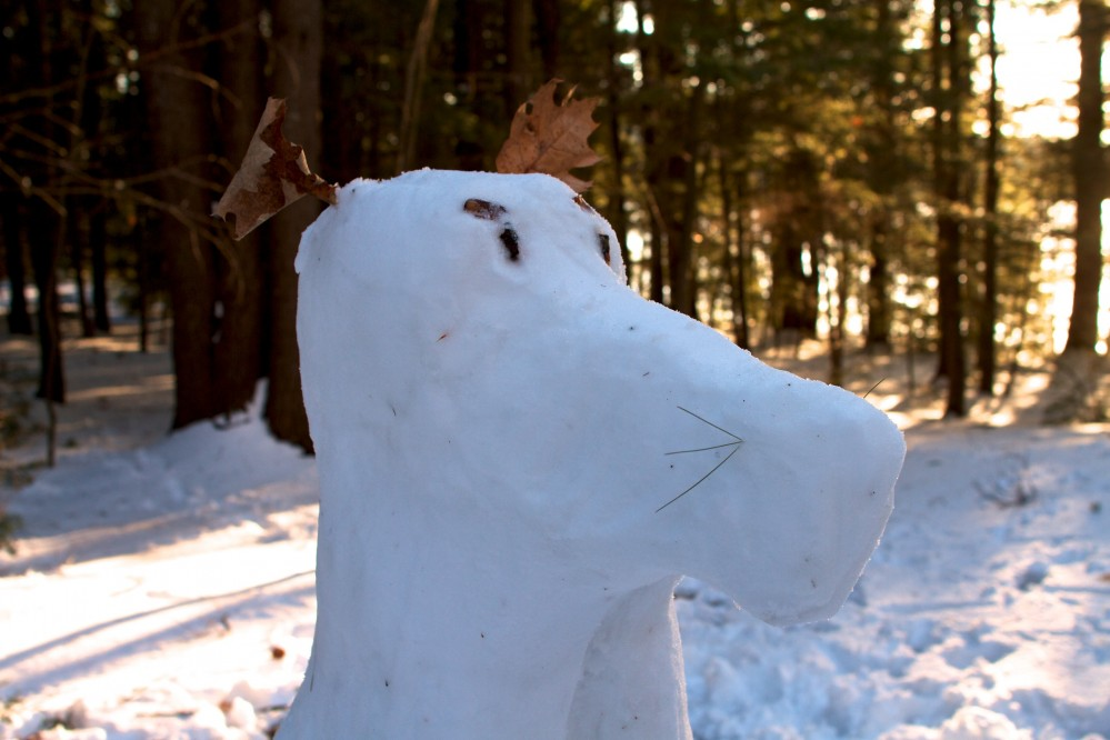Robert's Snow Moose(?) Detail
